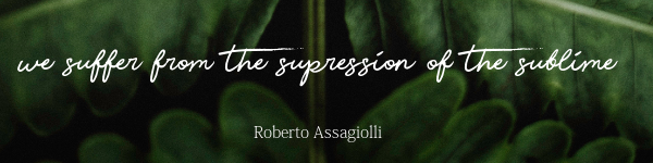 We suffer from the suppression of the sublime - Roberto Assagiolli
